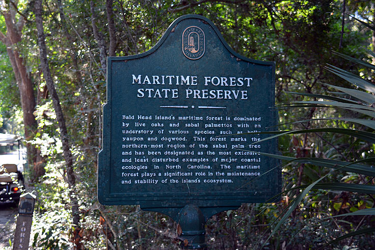 A Maritime Forest Preserve marker at Bald Head Woods, NC