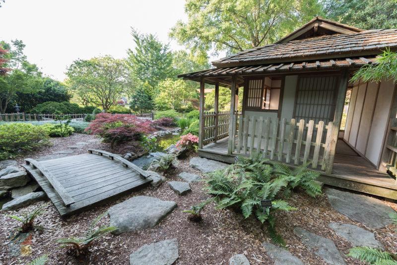 New Hanover County Arboretum Wilmington Nc Com