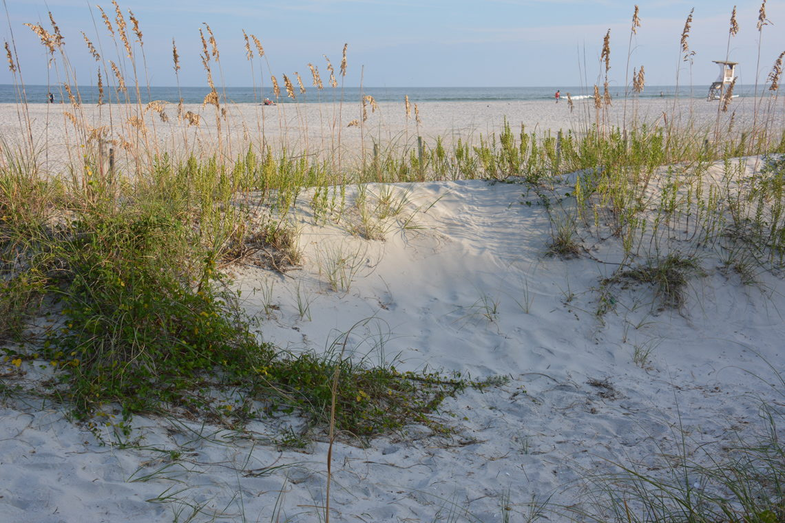 Wilmington, NC Campgrounds and RV Parks - Wilmington-NC.com